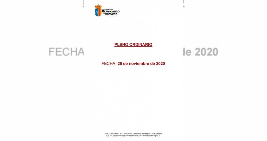 Acta Pleno 25 noviembre 2020